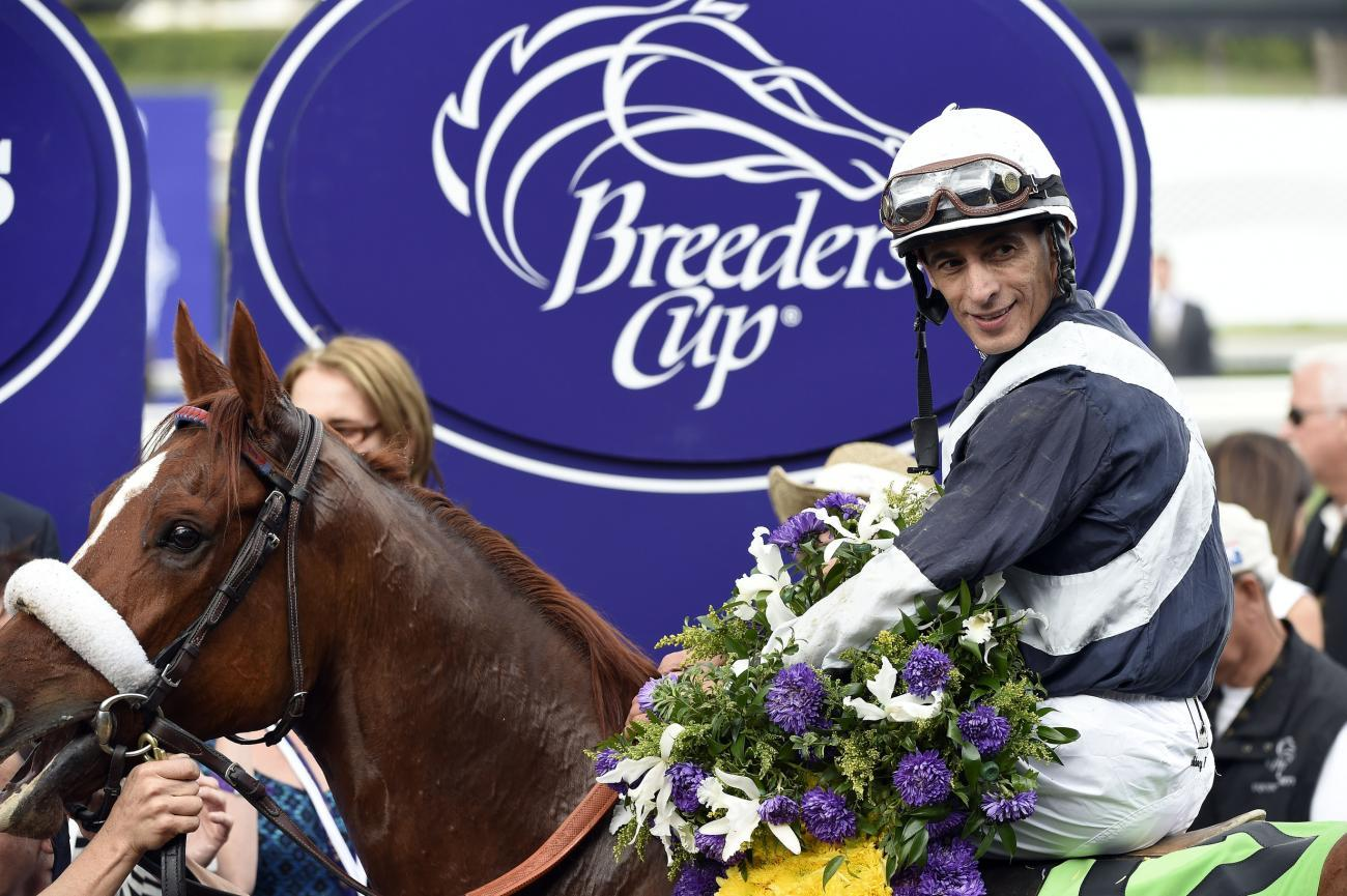 Breeders Cup Filly And Mare Sprint 2015 Odds Entries