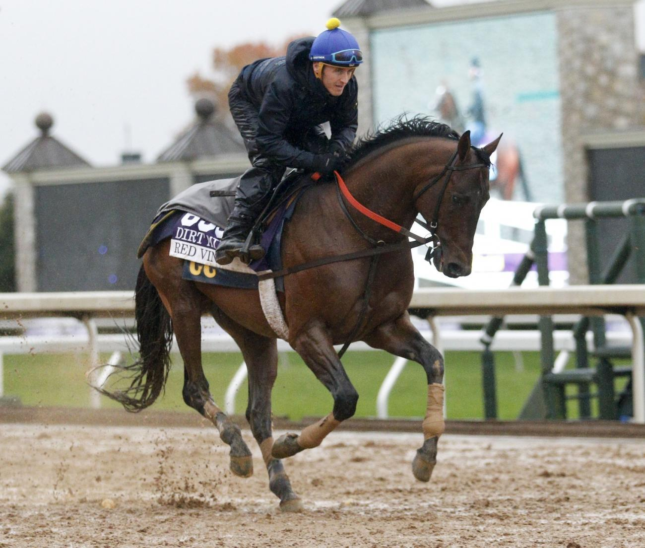 Breeders Cup Filly Amp Mare Turf 2015 Odds Entries
